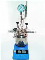 巖征10ml微型高壓反應釜