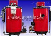 小型燃气锅炉参数