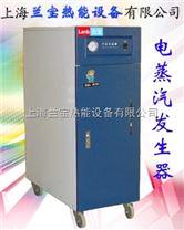 上海兰宝60kw全自动电加热蒸汽锅炉