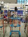 予华标准型双层玻璃反应釜YSF(EX)-30L