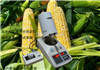 玉米快速水分测定仪